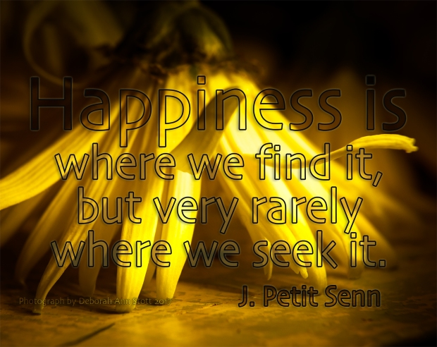 Happieness seek