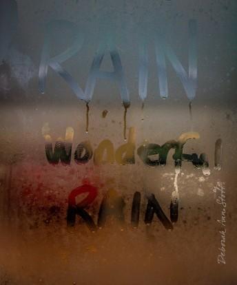 Rain. Wonderful rain.