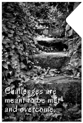 challenges-are-meant-to-be-met-and-overcome.jpg