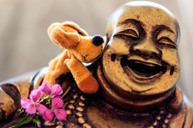 Dougal kisses the Laughing Buddha