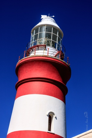 Lighthouse-1-blog