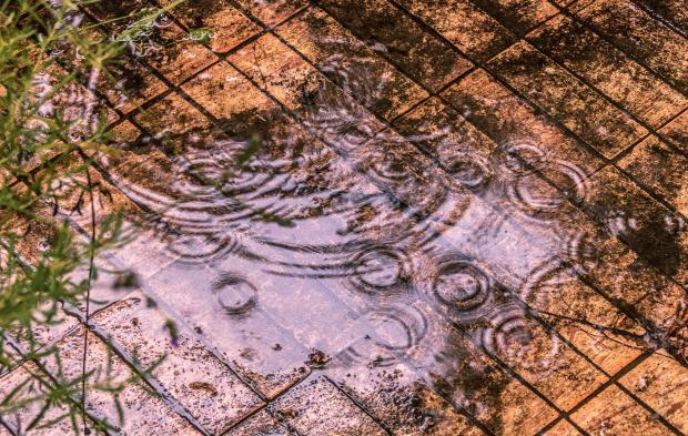 Rain puddle ripples © Deborah Ann Stott 2019